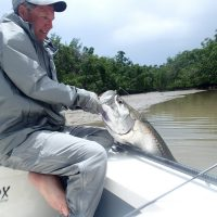 May/June Everglades Fish Report