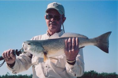 everglades-fly-fishing08