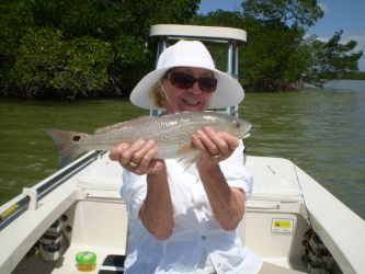 everglades-fly-fishing31
