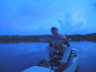 Everglades Snook on Kayak