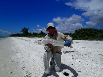 everglades-fly-fishing56